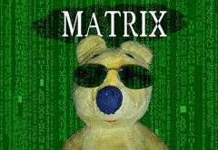 Der gelbe Bär entert die Matrix