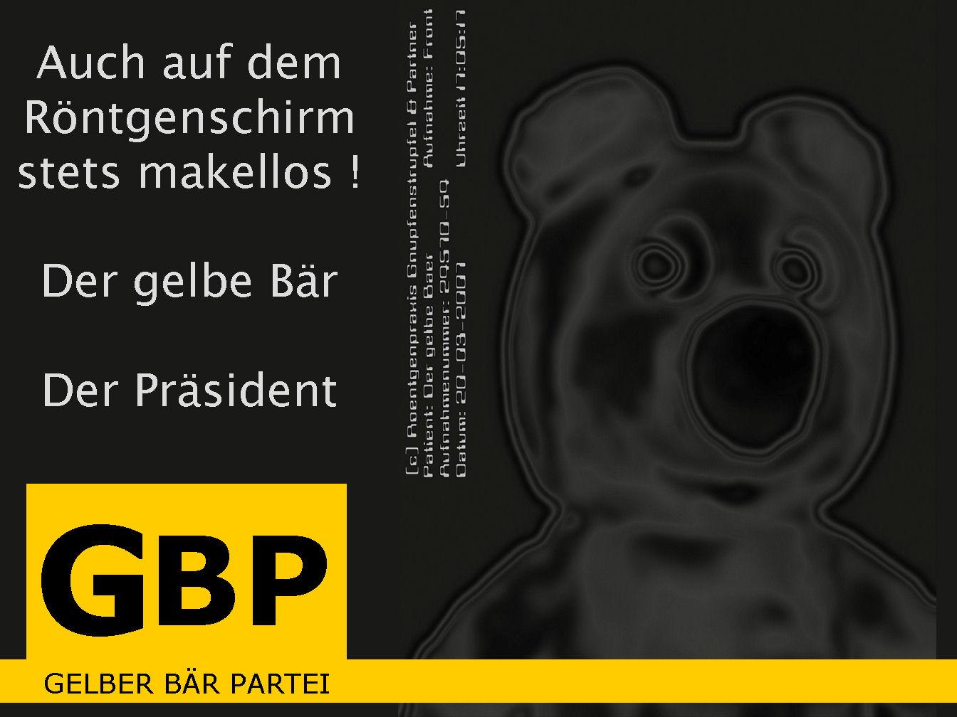 Der gelbe Bär for President