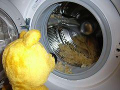Der gelbe Bär geschockt...ein Kissenmassaker