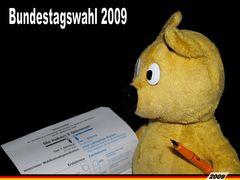 Der gelbe Bär hat gewählt - Bundestagswahl 2009 -