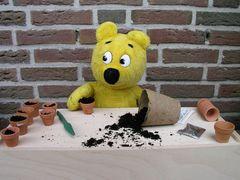Der gelbe Bär hilft bei der Aussaat