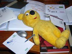 Der gelbe Bär hilft beim Lernen
