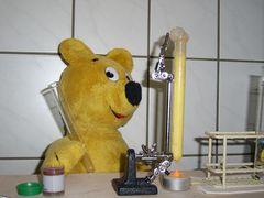 Der gelbe Bär hilft im Labor