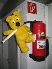 Der gelbe Bär hilft...beim Brandschutz