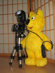 Der gelbe Bär hilft...beim Fotografieren (1)
