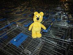 Der gelbe Bär hilft...Fuhrpark-Management im Möbelhaus