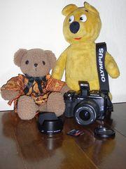 Der gelbe Bär hinter der Kamera