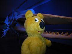 Der gelbe Bär im Museum (1)