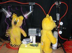Der gelbe Bär im YBSA-Labor