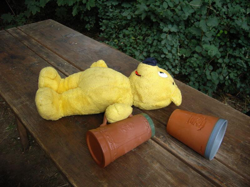 Der gelbe Bär in der Bärenschänke versackt