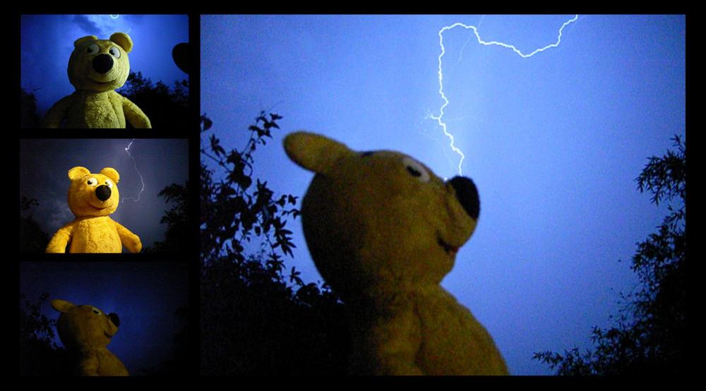 Der gelbe Bär in Gefahr - Blitzschlag in die Nase