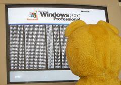 Der gelbe Bär ist entsetzt - ein Festplattencrash !!!