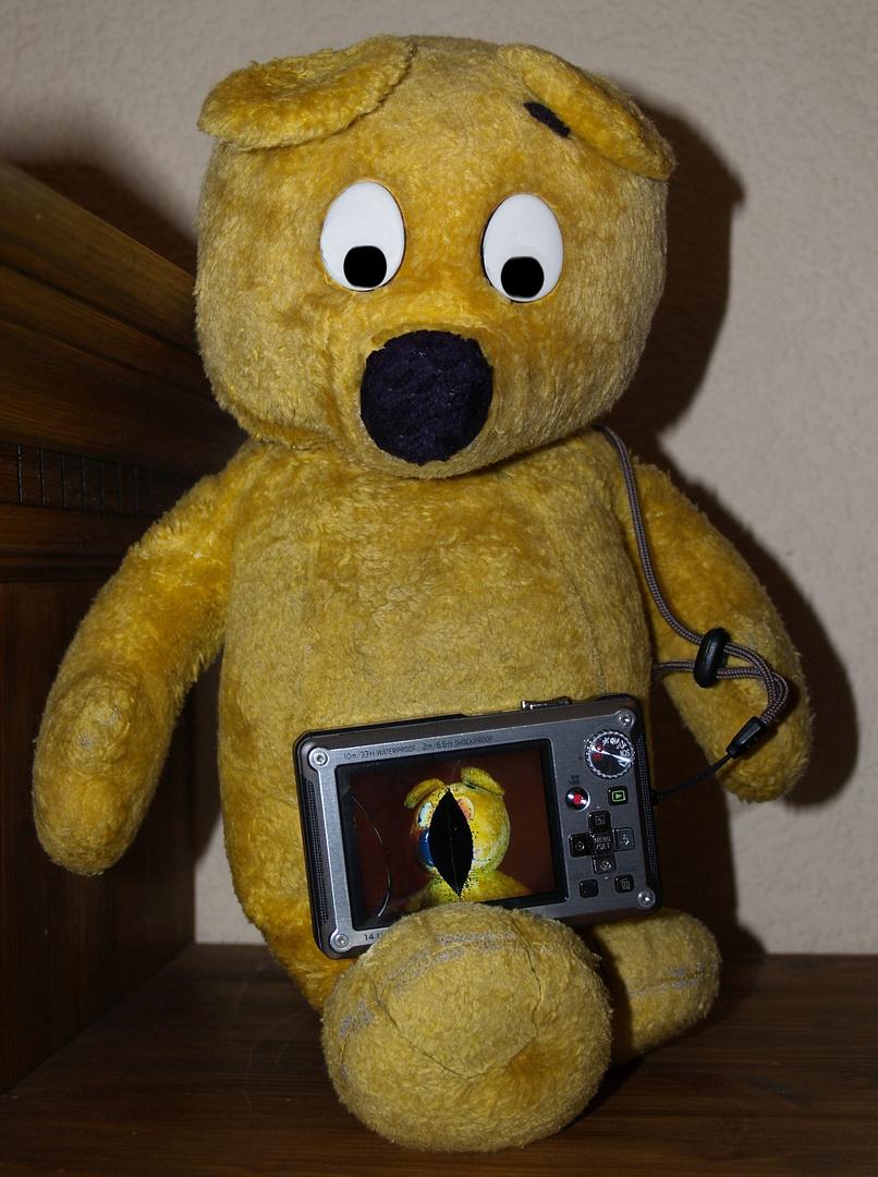 Der gelbe Bär ist traurig - Seine Kamera wurde überfahren !!!