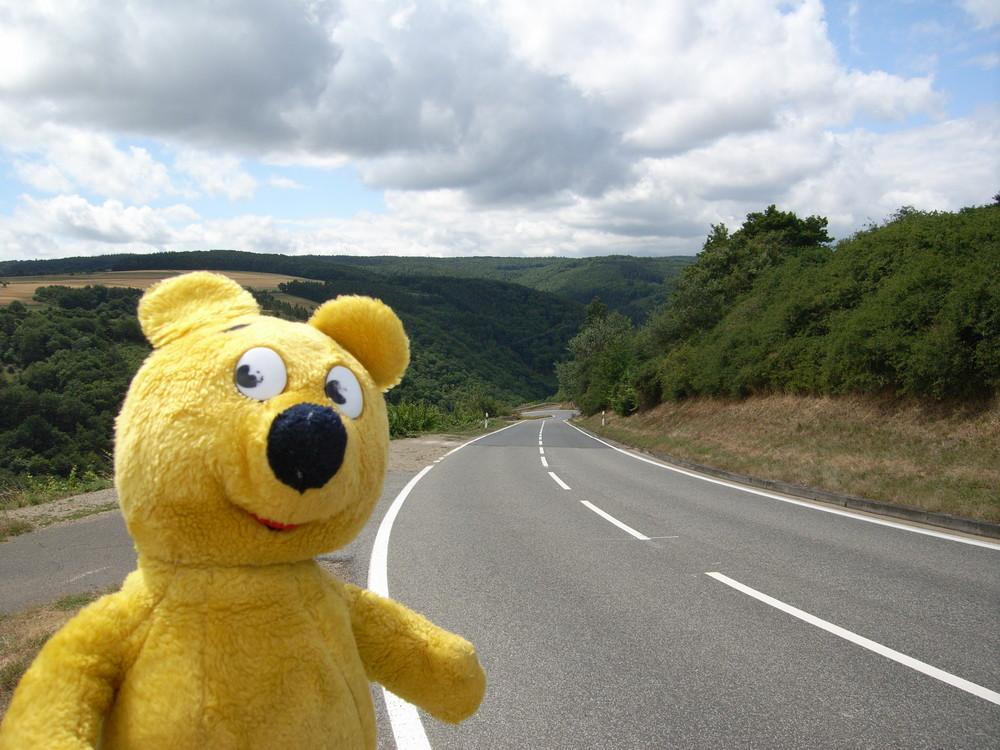 Der gelbe Bär per Anhalter unterwegs