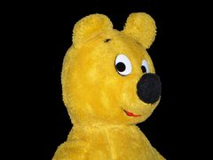 Der gelbe Bär - Portrait