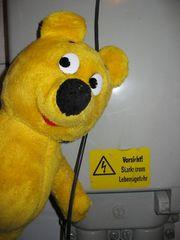 Der gelbe Bär prüft die Elektrik...