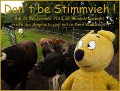 """Der gelbe Bär sagt """"Don't be Stimmvieh !"""""""