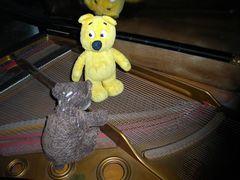 Der gelbe Bär und Wolly stimmen einen Konzertflügel