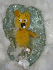Der gelbe Bär - Underwater