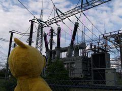 Der gelbe Bär warnt - heute kann es Gewitter geben