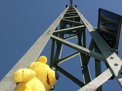 Der gelbe Bär warnt: Hoch hinaus... kann auch gefährlich sein