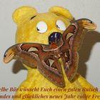 Der gelbe Bär wünscht Euch einen guten Rutsch ins neue Jahr