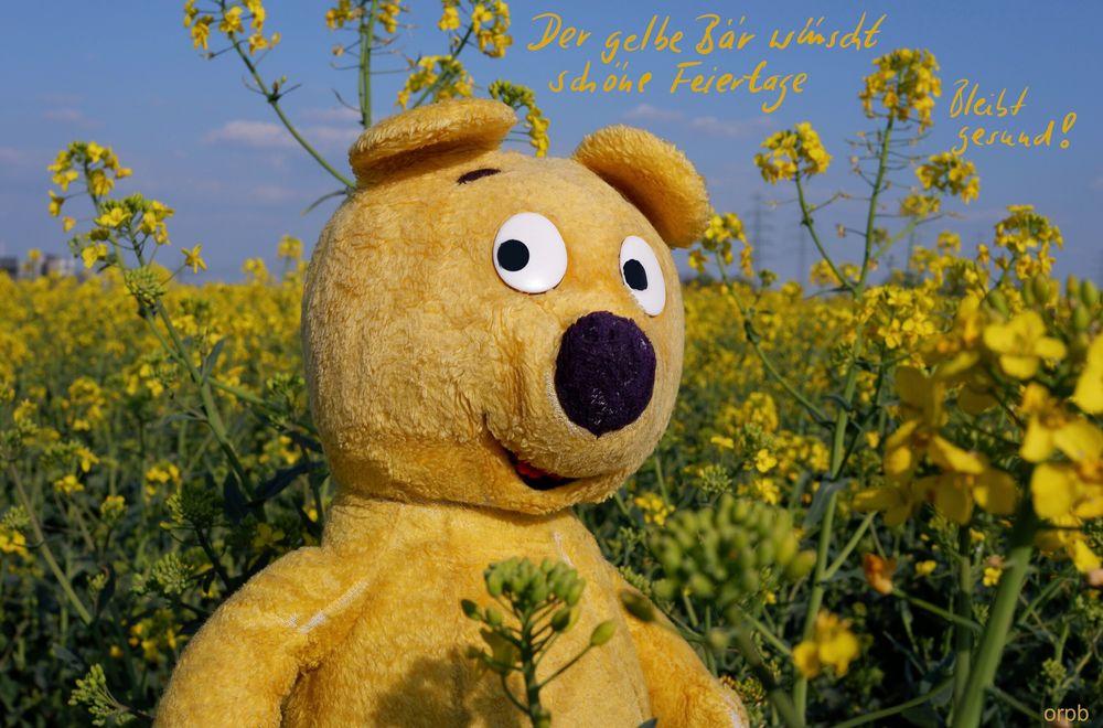Der gelbe Bär wünscht schöne Feiertage