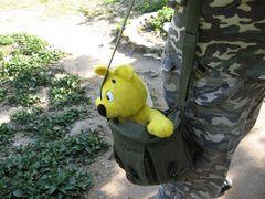 Der gelbe Bär...bald unterwegs