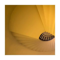 Der gelbe Fächer