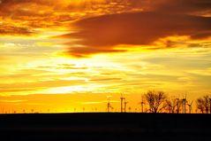 der gelbe Sonnenaufgang*