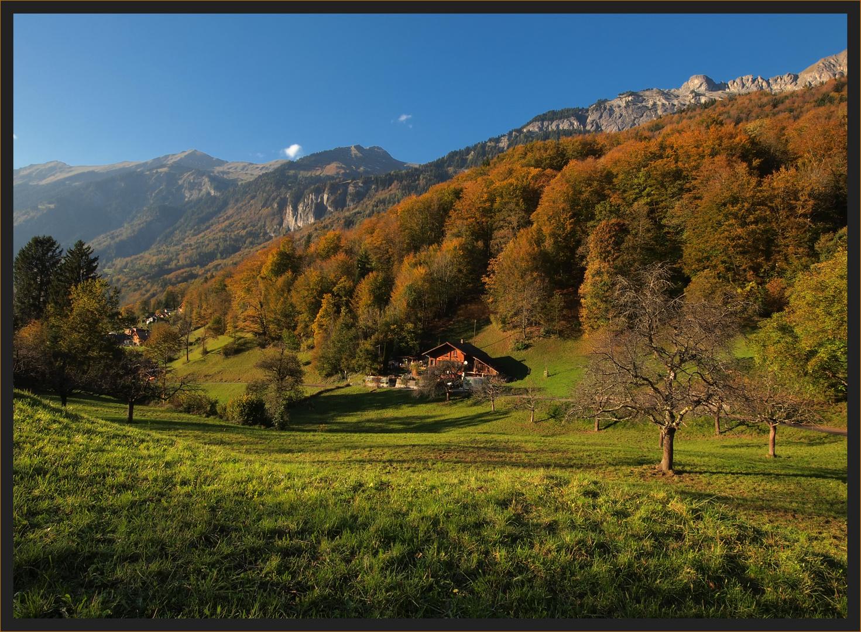 Der goldene Herbst...