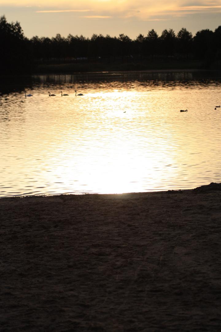 Der goldene See