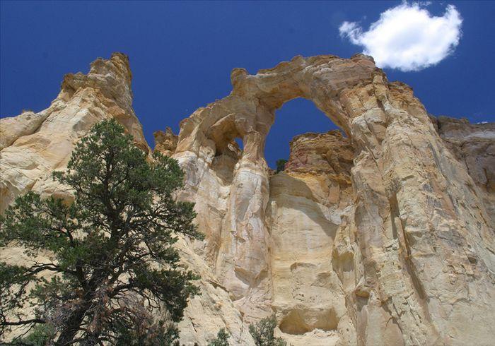 Der Grosvenor Arch
