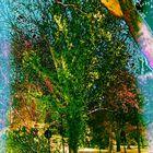 Der grüne Baum