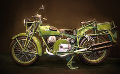 Der grüne Frosch ....