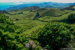 Der grüne Norden von Sao Miguel