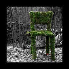 der grüne stuhl am teich