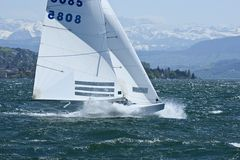 der gute alte Föhn bringt Wind am Zürichsee