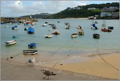 Der Hafen in St Ives