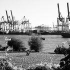 Der Hamburger Hafen ist irgendwie blumig 2