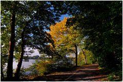 Der Herbst 2010