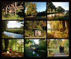 Der Herbst am Niederrhein