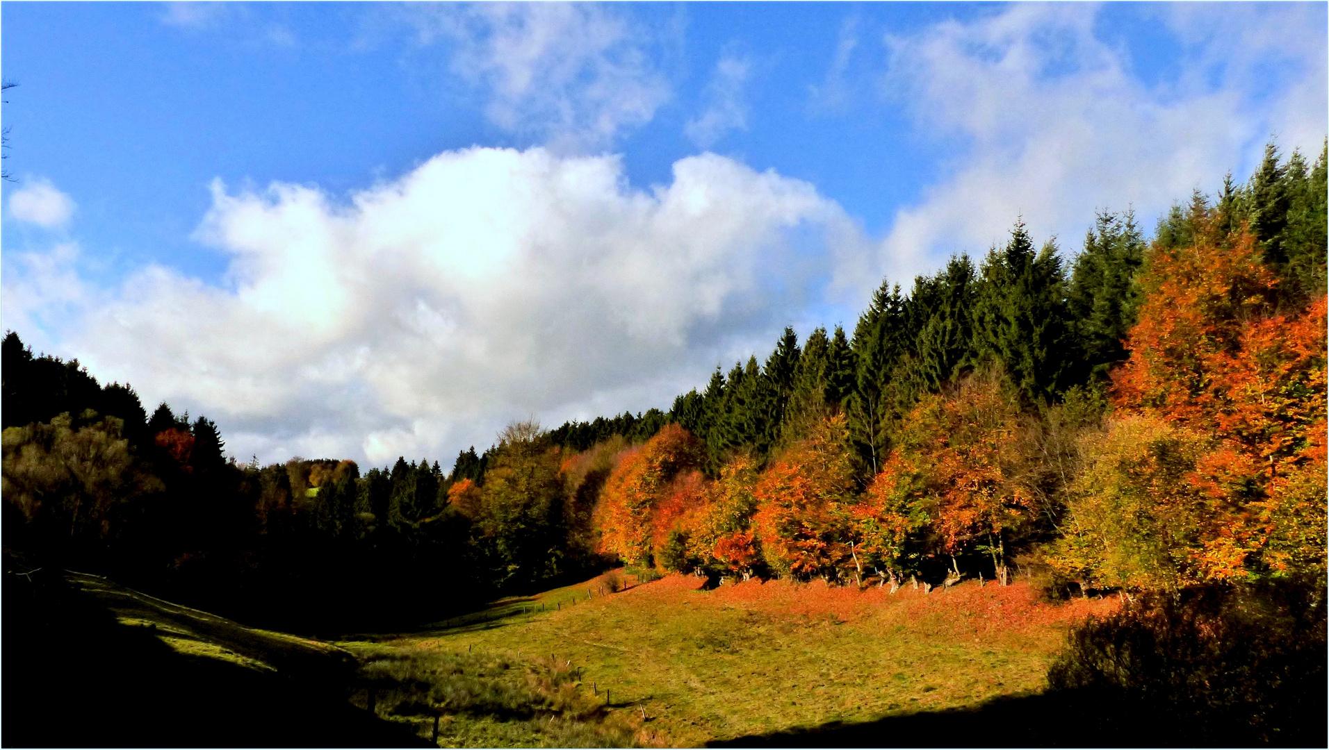 """""""Der Herbst, das ist ein Malersmann..."""