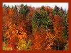 Der Herbst der herbst der herbst ist da!