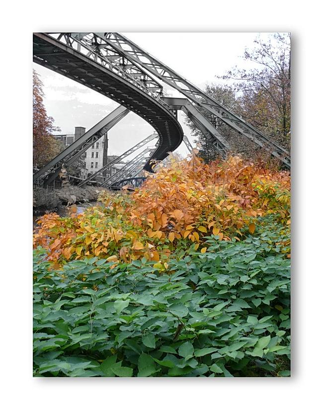 Der Herbst - Eine bunte Jahreszeit ...