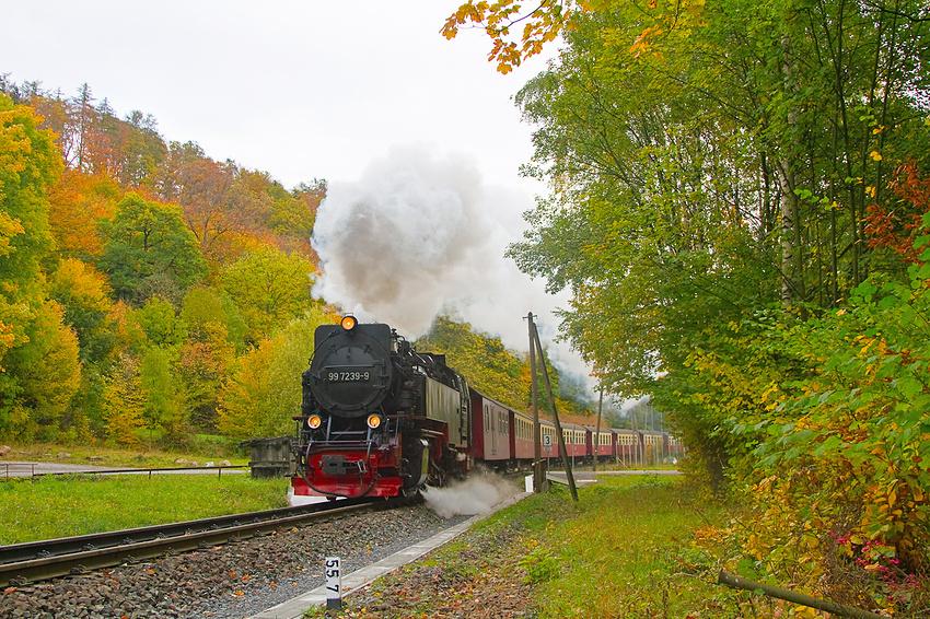 der Herbst im Harz