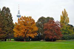 Der Herbst im Luisenpark Mannheim