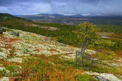 Der Herbst im Norden