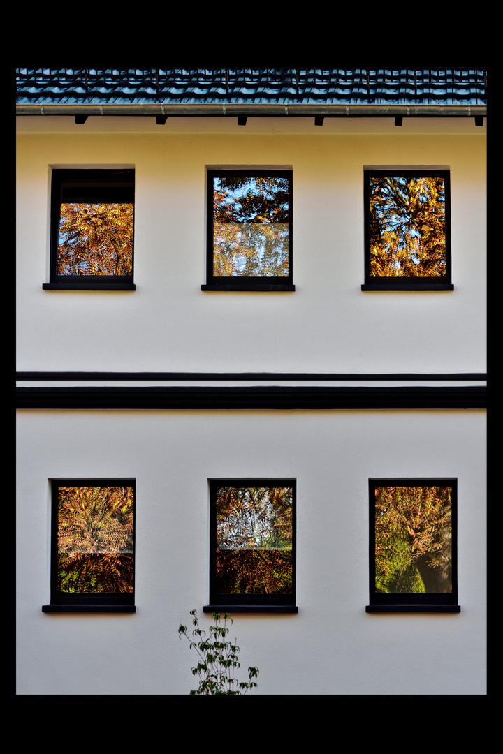 Der Herbst in den Fenstern von Heiligenstadt