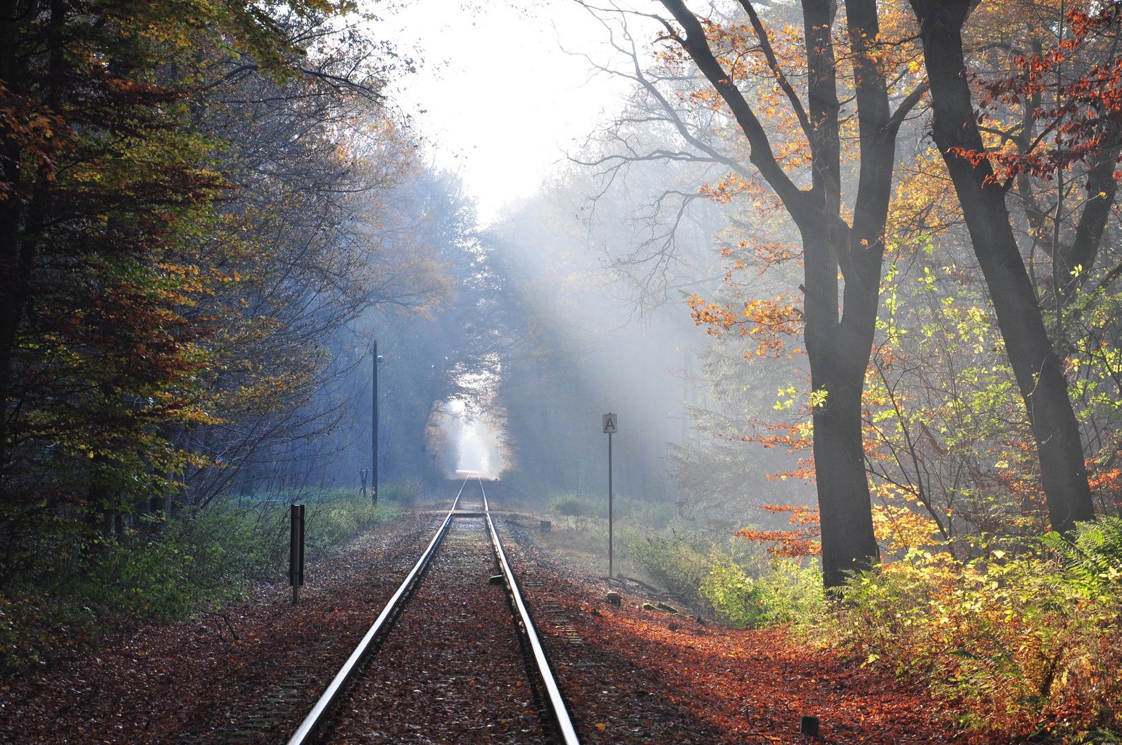 Der Herbst ist da...... Wundervoll !!